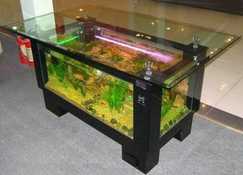 circle coffee table aquarium. table blended with fish tank. hot