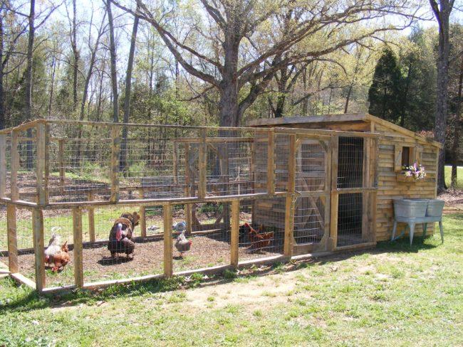 Building a Pallet Chicken Coop