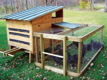 Chicken Coop From Pallet Plans