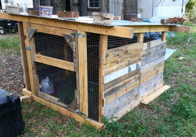 Easy Pallet Chicken Coop
