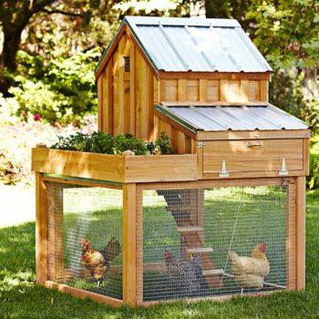 Pallet Chicken Coop Plans