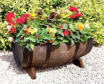 Wine Barrel Garden Ideas