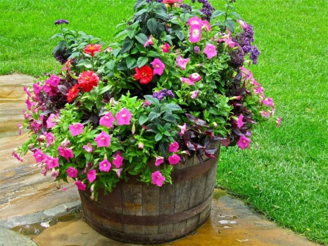 Wine Barrel Planter Ideas
