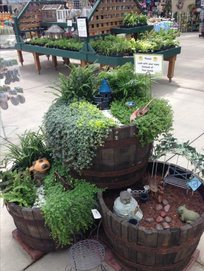 Wine Barrel Planters for Indoor