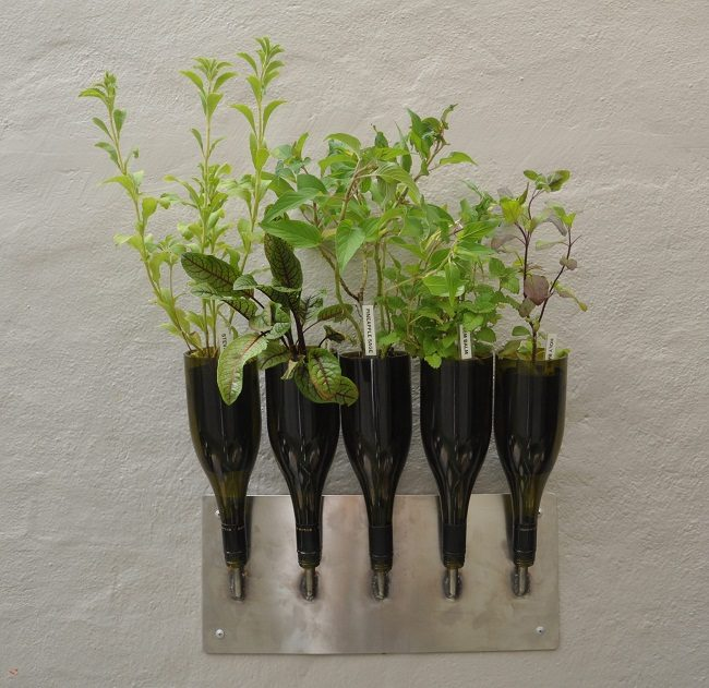 Wine Bottle Herb Planter