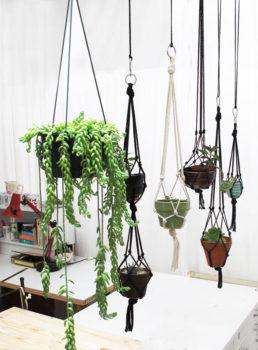 Macramé Hanging Plant