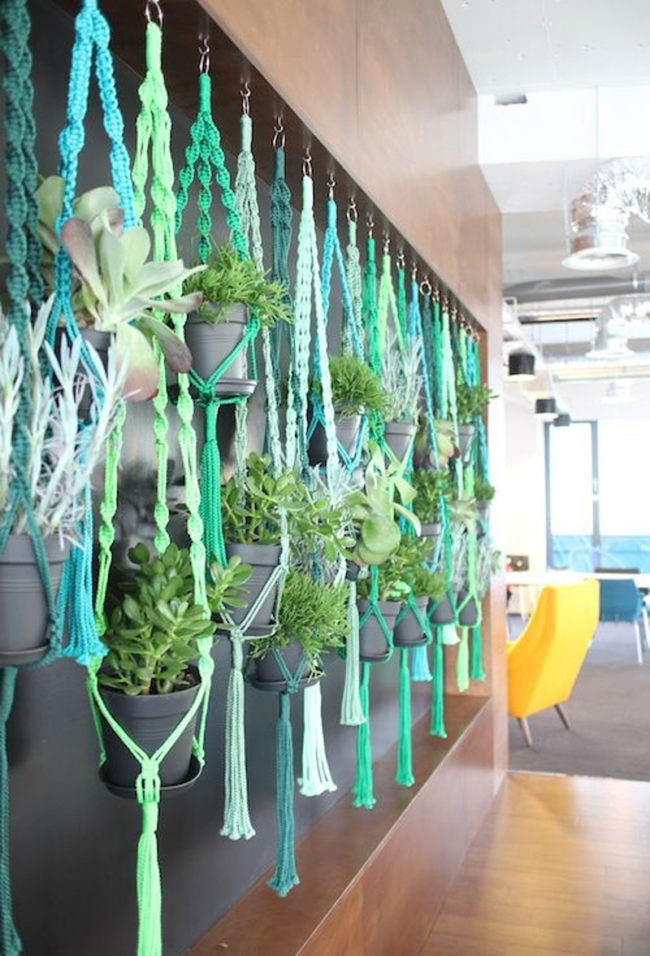 Macramé Plant Hanging