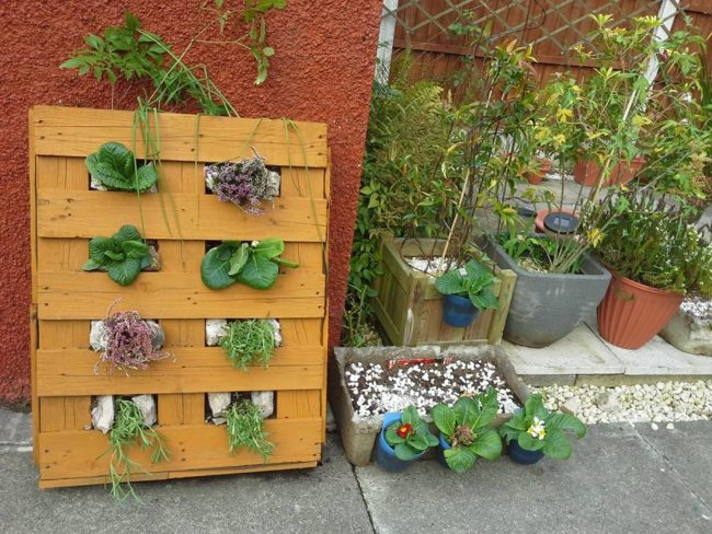 Using Wood Pallets For Planters