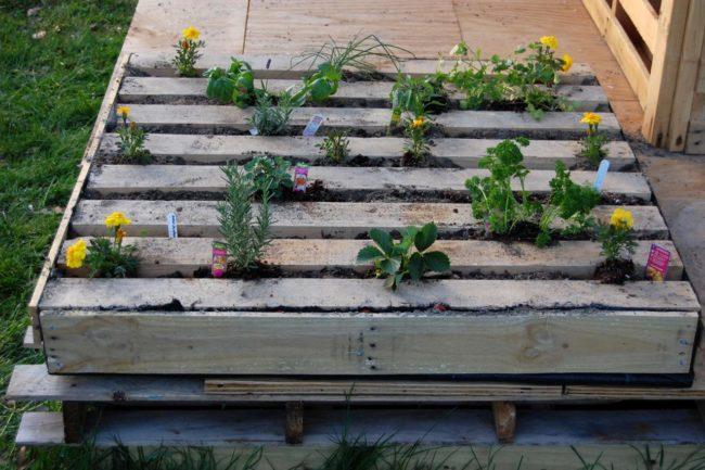 Wood Pallet Herb Gardens
