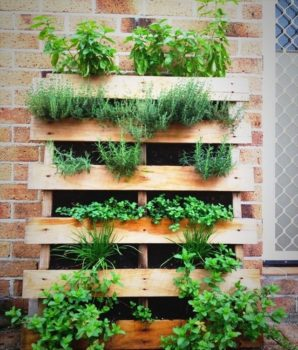 Wood Pallet Herb Planter