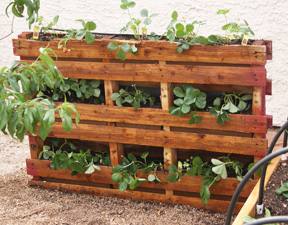 Wood Pallet Planter Box Plans