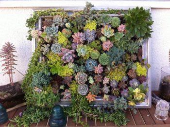 Wood Pallet Succulent Garden