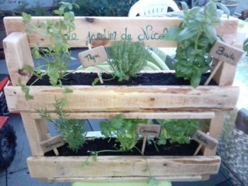 Wood Pallets As Planters