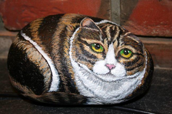 Painted cat rocks