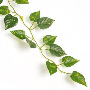 Garland Leaves
