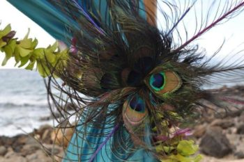 Feathers Curtain Tie Backs