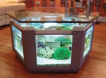 Hexagon Aquarium Fish Tank Coffee Table