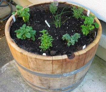 Madly Whimsical Wine Barrel Planter Ideas