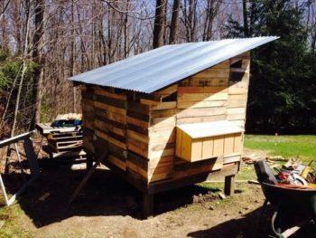 Chicken Coop From Pallet Wood