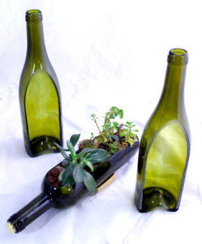 Glass Wine Bottle Planter