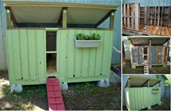 Make a Pallet Chicken Coop