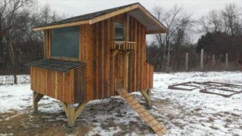 Pallet Chicken Coop Design
