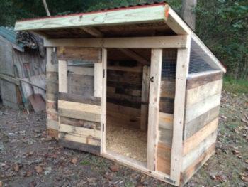Pallet Chicken Coop Designs