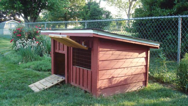 Pallet Chicken Coop Free Plans