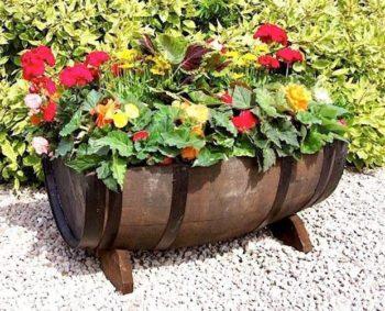 Wine Barrel Garden Ideas