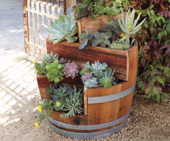 Wine Barrel as Planter