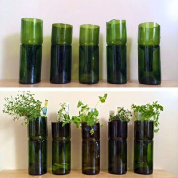 Wine Bottle Hydroponic Planter