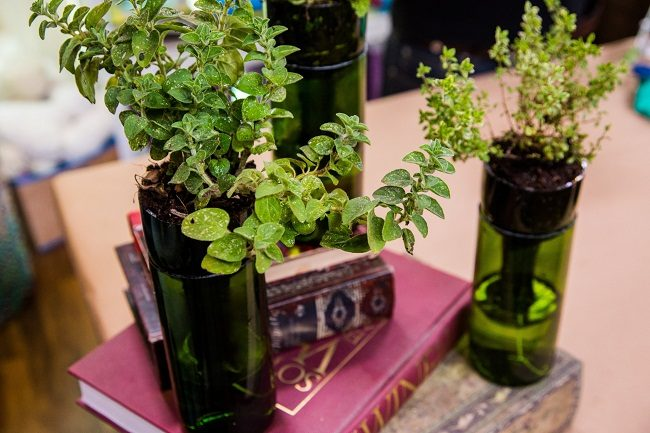 Wine Bottle Planter Herb