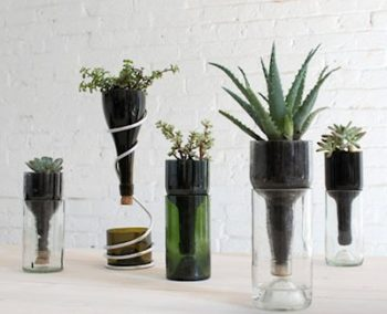 Wine Bottle Upside down Planters