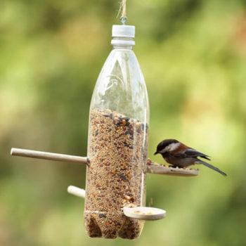 make a bird feeder from milk jug