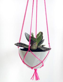 Easy Macramé Plant Hanger