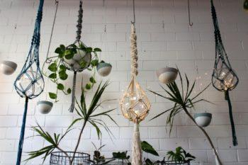Macramé hanging planters