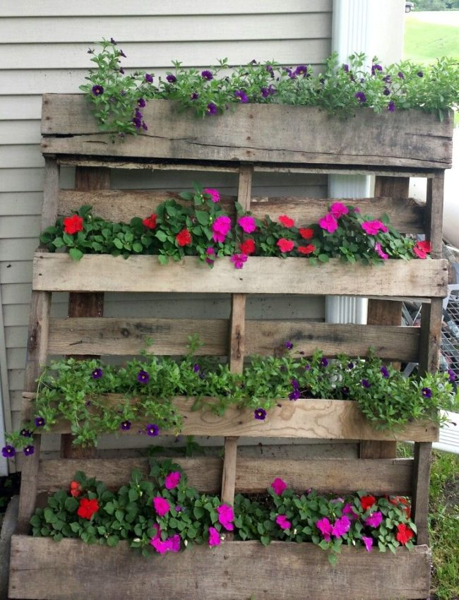Wood Pallet Planting