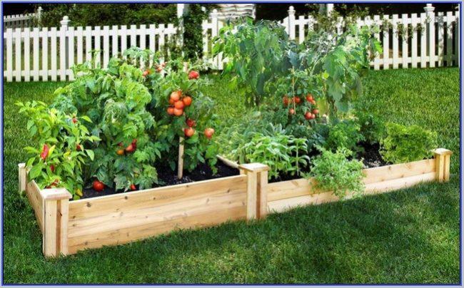 Tiered Raised Garden Bed Plans