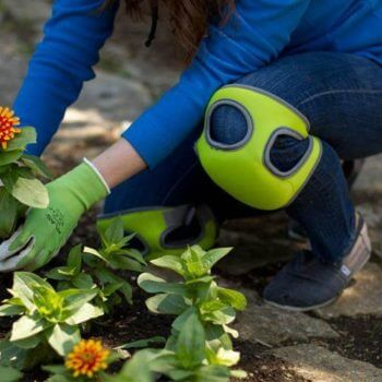 10 Must-Have Gardening Tools