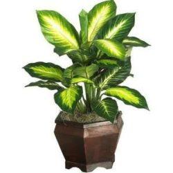 artificial indoor floor plants | Inhabit Zone