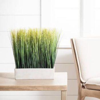Cheap Artificial Indoor Plants
